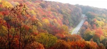 ¿Cuándo inicia el otoño en México? Foto: Pixabay Dr. Michael A. Milton